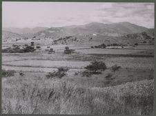 San Andres Sajcabaja. Chibog Chiquito