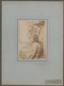 Laouyétékentsis, de profil