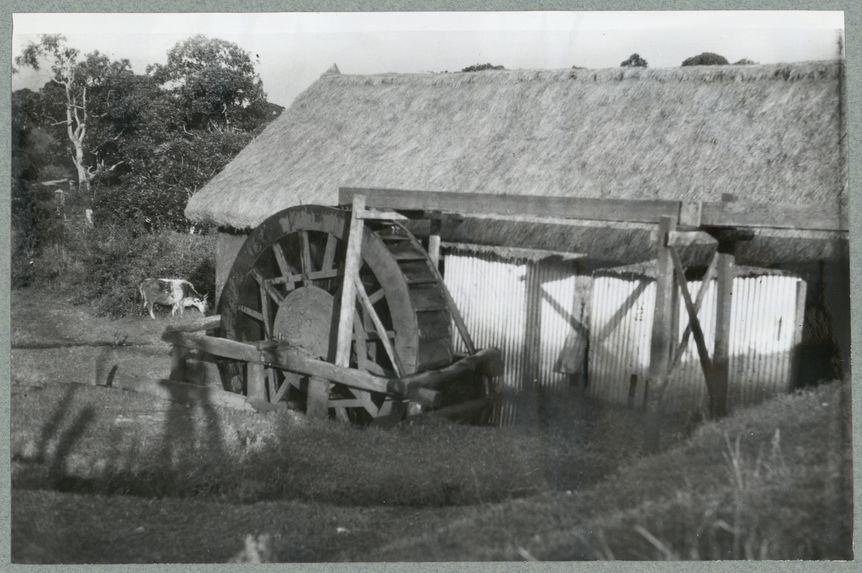 Sans titre [moulin]