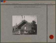 Ancienne habitation Maori
