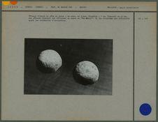 Gâteaux rituels en pâte de sucre
