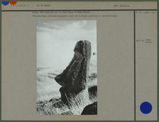 Grande tête sculptée sur le flanc Ouest du Rano Raraku