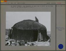 Les tentes (alatchir) sont recouvertes de namad : tapis de feutre que les femmes...