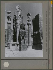 Les colonnes aux molosses
