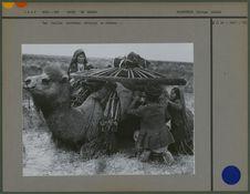 Une famille turkémène décharge un chameau