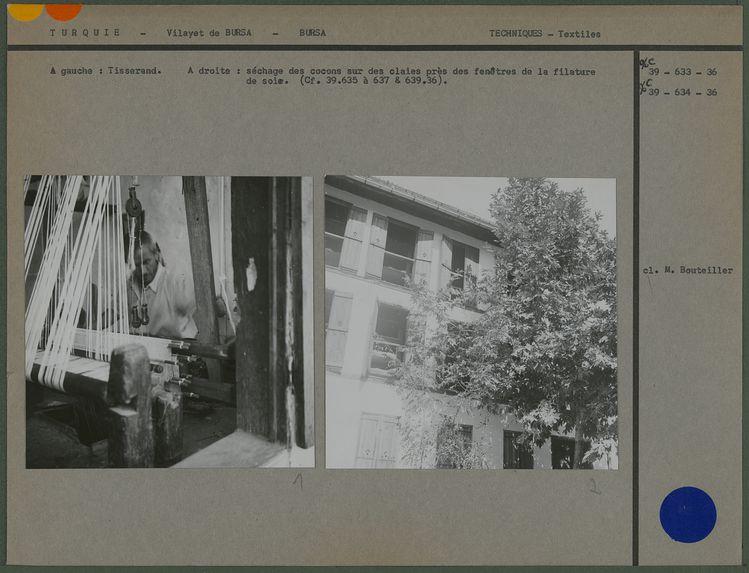 Séchage des cocons sur les claies près des fenêtres