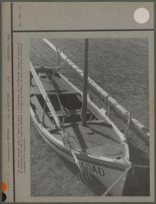 Une barque équipée pour la pêche au mérou