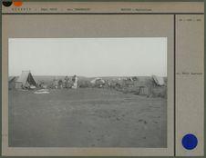 Un campement après la pluie dans un Oued au Hoggar