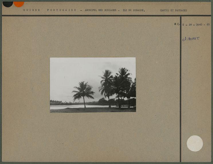 Sans titre [la plage de l'île de Bubaque]