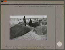 """La """"roche sonnante"""" sur le site des gravures rupestres"""