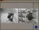 Sans titre [coiffure de femme Bornouan]