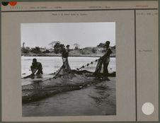 Pêche à la seyne dans la lagune