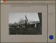 Tombeau rectangulaire à clôture de palissade en planches