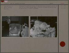 Déballage d'une momie de Paracas, à l'American Museum of natural History