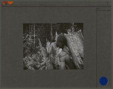 Sans titre [hommes armés dans la forêt]