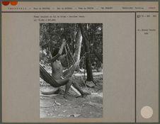 Femme triplant un fil de coton