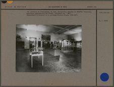 """Vue partielle de l'exposition """"Les collections du Tchad&quot"""