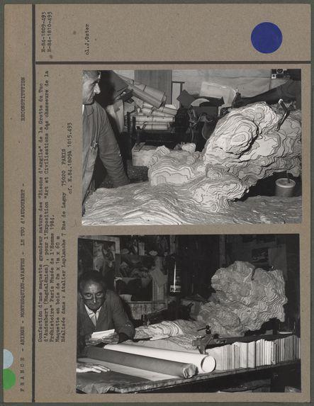"""Confection d'une maquette grandeur nature des """"Bisons d'argile"""" de la Grotte du Tuc d'Audoubert"""