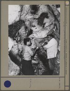 L'Abbé Breuil relevant les peintures de Lascaux