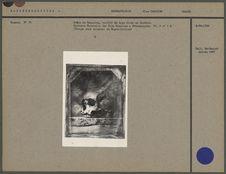 Crâne de Canarien