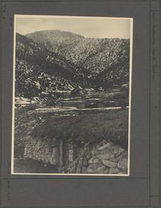 Environs du Djebel Touggour ou Pic des Cèdres