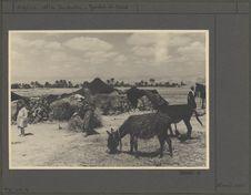 Campement de nomades