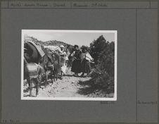 Ouled Abdi du village de Arbia (près de Chir) gagnant les terres sahariennes de...