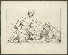 A wild native taking a kangaroo, hid dog having caught it, he runs to kill it...