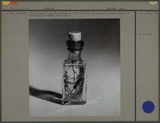 Liquide rose dans un flacon en verre