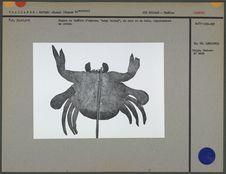 Figure de théâtre d'ombres : un crabe