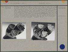 Planche à imprimer : trois éléments du motif