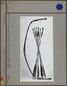Arc réflexe et flèches