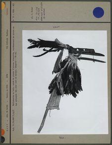 Marionnette en bois
