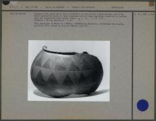 Fragment d'un grand pot