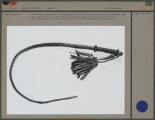 Fouet utilisé comme arme par les hommes