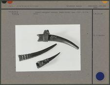Flûtes à embouchure terminale en corne