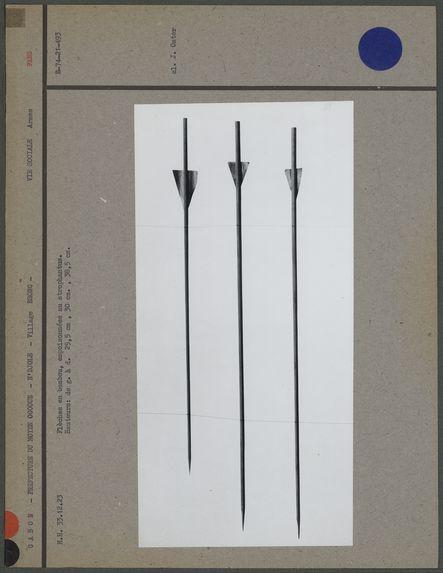 Flèches en bambou empoisonnées