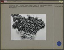 Fragment d'un réseau à l'aiguille en laine