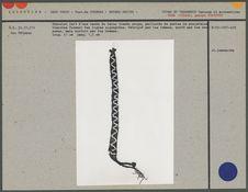Bracelet fait d'une bande de laine tissée