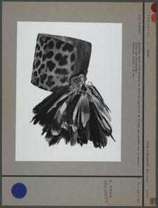 Coiffure en peau et plumes