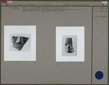 Partie de visage humain