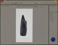Epis de maïs en pierre grise polie