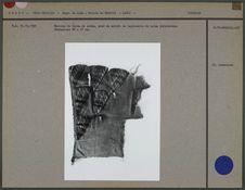 Fragment de tissu de coton