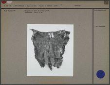 Fragment de tissu