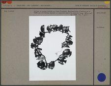 Collier en noyaux taillés
