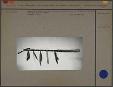 Trompette rituelle en bois et plumes