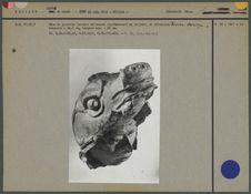 Quetzacoatl : tête humaine sortant de la tête du serpent