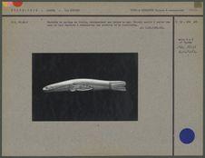 Sculpture eskimo en ivoire
