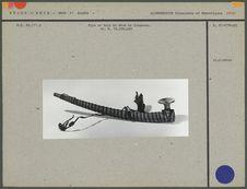 Pipe en bois de 26 cm de longueur