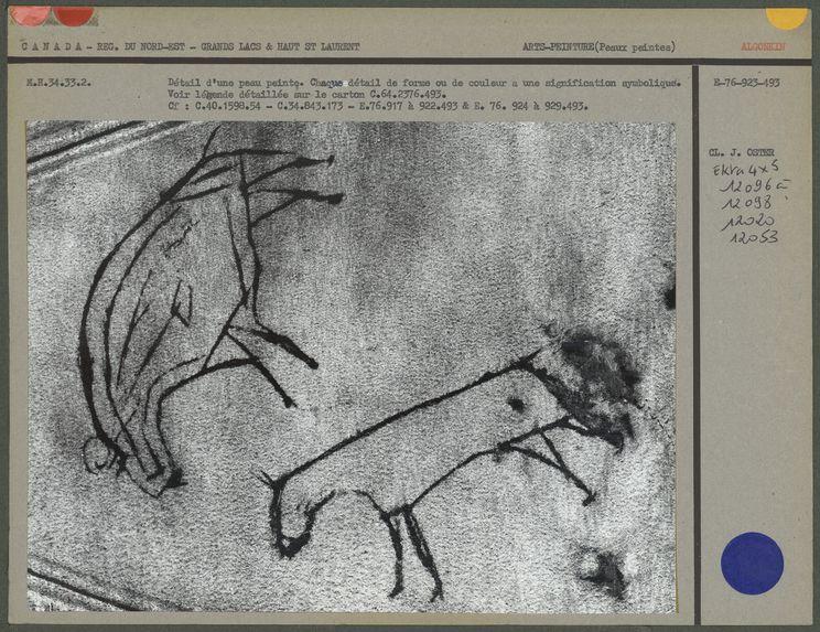 Détail d'une peau de bison peinte